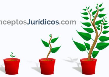 Caso de estudio: conceptosjuridicos.com