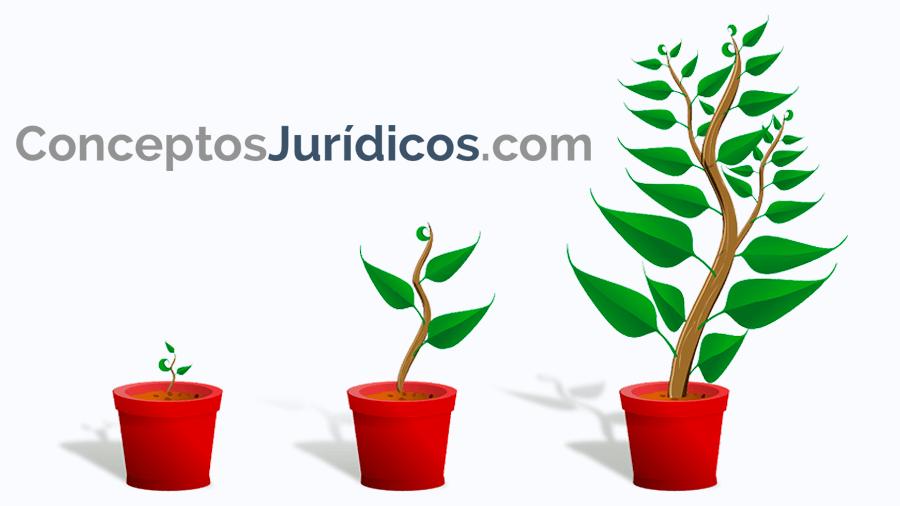 conceptosjuridicos.com
